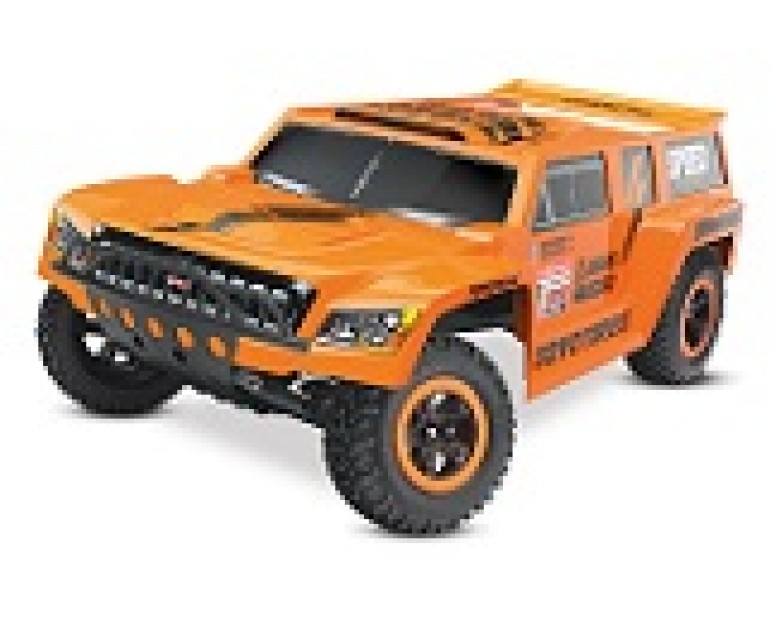 Robby Gordon Dakar Edition